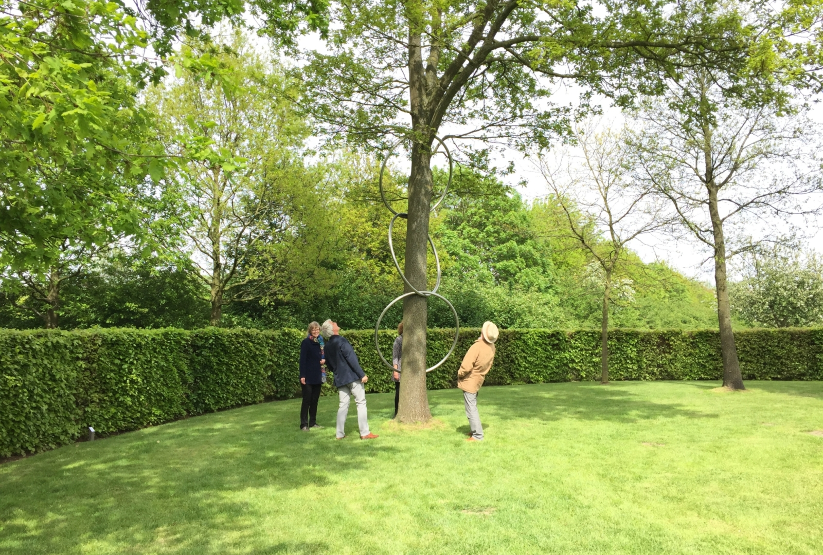 Linking rings Maze de Boer 5