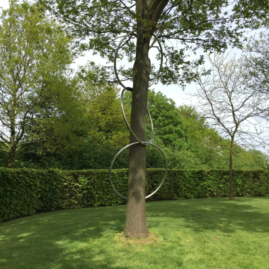 Linking rings Maze de Boer 4